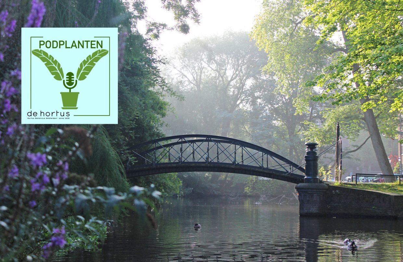Begraafplaats Hortus Amsterdam