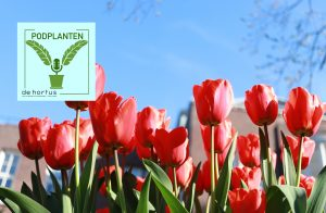 Tulpen Hortus Amsterdam